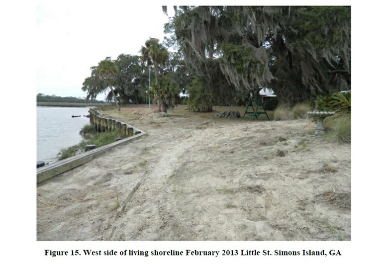 St. Simons Island Before